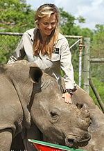 Petronel__from_Care_for_Wild_Africa_-_hands_on_care_of_endangered_rhino