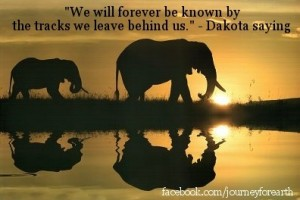 elephant quotes...and pic 1