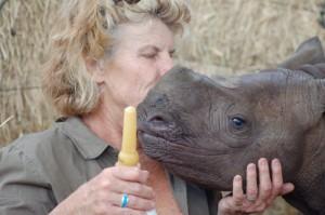 rhino and Judy
