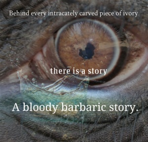 behind every carved piece of ivory, there is a story. A bloody barbaric story