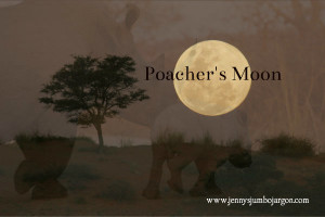 poachers moon rhino watermarked