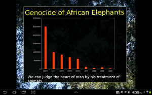 genocide of african elephant