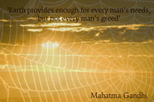 spiderwebs pic and quote ...every earth provides
